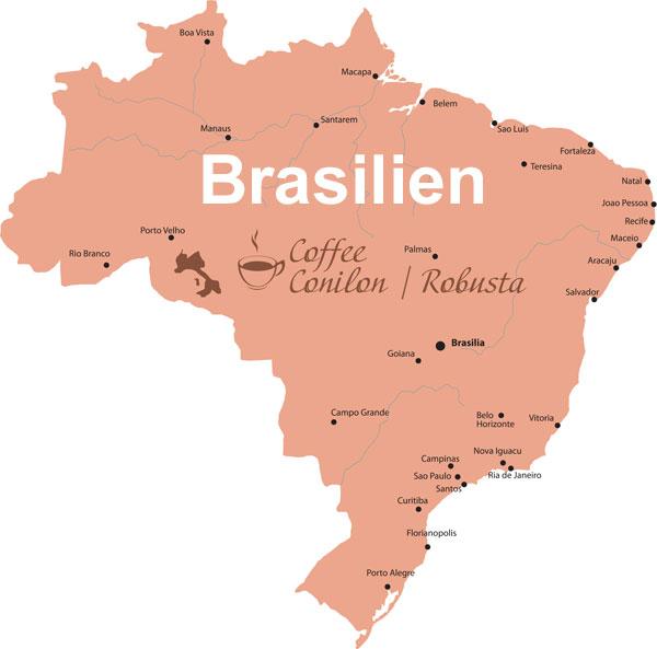 Brasilien-Robusta-Bohnen